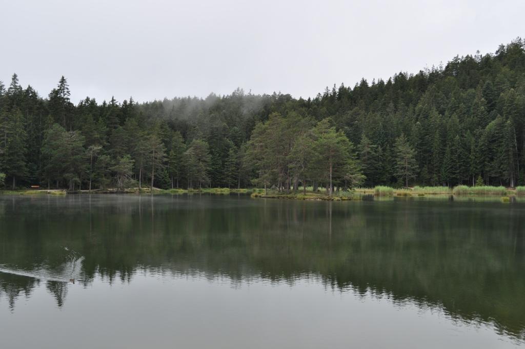 20111226-225547.jpg